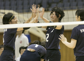 ph_animal_volleyball_2